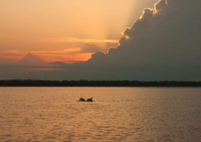 colombia-heritage-journey-_-motherland-travel-_-colombia-sunset-with-dolphins
