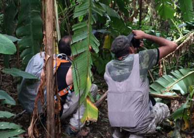 colombia-heritage-journey-_-motherland-travel-_-rene-birding