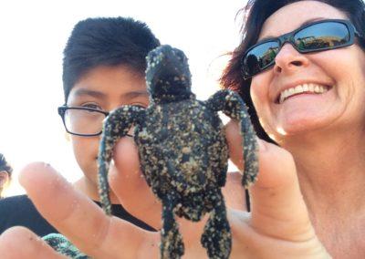 Sea Turtle release Todos Santos